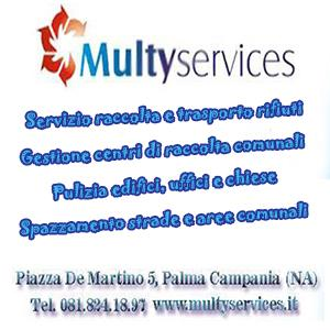 BANNER MULTISERVICES 300X300