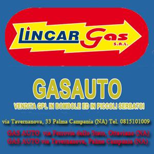 banner lincargas 300x300